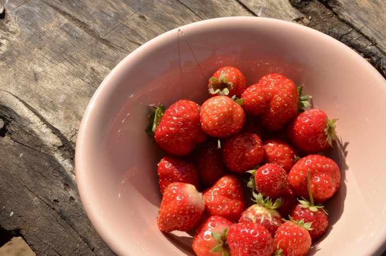 Mabhefarm_strawberry